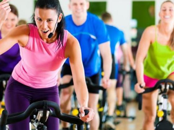 Fitness & Enrichment
