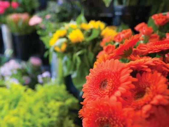 *Florists