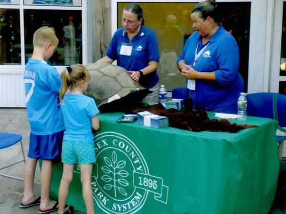 Become a Docent at Turtle Back Zoo