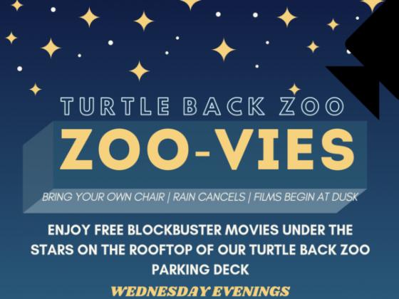 Zoo-vies at the Zoo