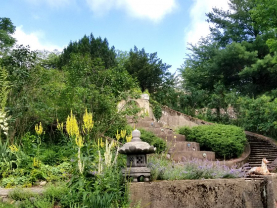 Historic Oasis Greenwood Gardens Reopens this Month